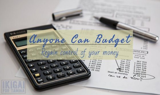 Anyone Can Budget featured image